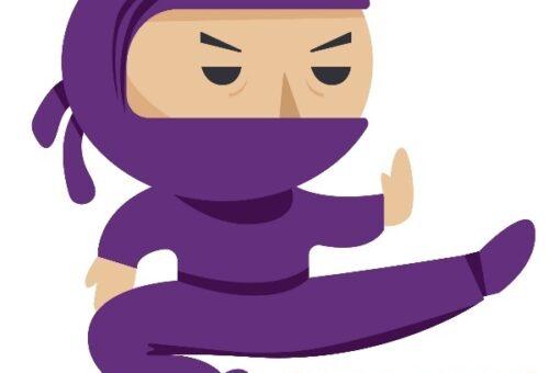 Purple Ninja BG